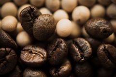 Roasted coffee beans background. Stock Photo