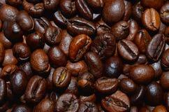 Roasted coffee beans background. Fresh roasted coffee beans background, texture. Arabica bean wallpaper, close-up Stock Image