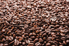 Roasted coffee beans. Background. Roasted coffee beans in golden light Stock Images