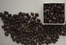 Roasted coffee beans background. . stock photography