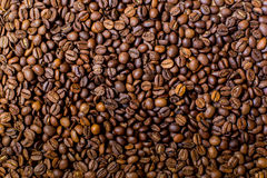Roasted coffee beans background. Coffee pattern. Black coffee beans Stock Photos