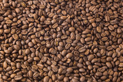 Roasted coffee beans background and texture. Stock Image