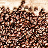 Roasted Coffee Beans background texture on wooden background fra Stock Images