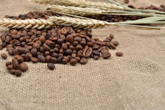 Roasted coffee beans on brown jute background, with several thre. Ads of wheat on it. Rustic image. Morning pleasure. Still life. Selective focus. Copy space Stock Photos