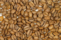 Roasted Coffee Beans. Roasted Brown Coffee Beans. Macro photo Royalty Free Stock Photos