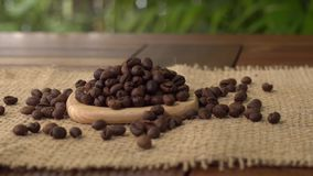 Coffee beans on burlap. Roasted coffee beans on the burlap stock video footage