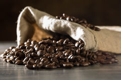 Roasted coffee beans within a burlap bag. Some roasted coffee beans within a burlap bag Stock Photography