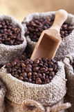 Roasted coffee beans in burlap sacks Stock Photos