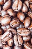 Roasted coffee beans can be used as a background. Roasted coffee beans, can be used as a background Royalty Free Stock Photos