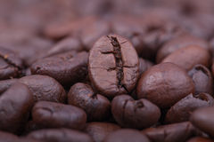 Roasted coffee. Beans, can be used as a background Royalty Free Stock Image