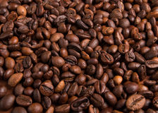 Roasted coffee beans, can be used as a background. Roasted coffee beans, can be used as background Stock Images