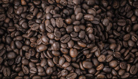 Roasted coffee beans, can be used as a background.  Royalty Free Stock Image