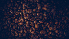 Roasted coffee beans, can be used as a background.  Stock Image