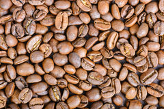 Roasted coffee beans, can be used as a background Royalty Free Stock Images