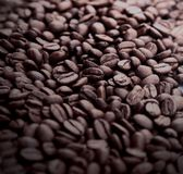 Stripe of coffee beans  on white Royalty Free Stock Photography