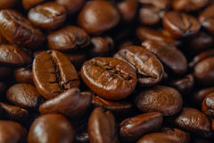 Roasted coffee beans. Close up roasted coffee beans Stock Images
