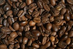 Roasted coffee beans close-up for use background. Roasted coffee beans, can be used as a background royalty free stock photos