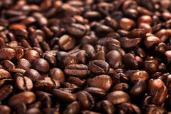 Roasted coffee beans close-up background Royalty Free Stock Image