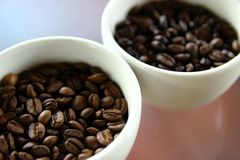 Roasted coffee beans. Closeup of roasted coffee beans in small white cups Royalty Free Stock Photo