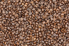 Roasted coffee beans and coffee beans background Royalty Free Stock Photography