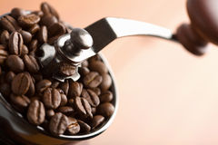 Roasted coffee beans in coffee grinder Stock Images