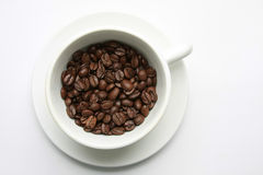 Roasted coffee beans in cup Royalty Free Stock Image