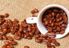 Roasted coffee beans in cup Royalty Free Stock Images