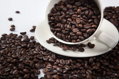 Roasted coffee beans with a cup Stock Images