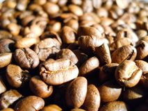 Roasted coffee in beans Stock Photos