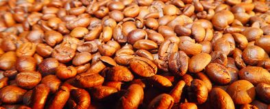 Roasted coffee in beans Stock Image