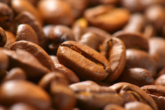 Roasted coffee beans. Detail of roasted coffee beans Stock Photography