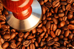 Roasted coffee beans and espresso tamping press. Looking down on beans and tamper press Royalty Free Stock Photo