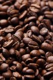 Roasted coffee beans. Grains of roasted coffee background royalty free stock images
