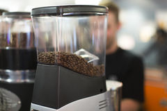 Roasted coffee beans in a grinder Royalty Free Stock Photo