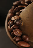 Roasted coffee beans in the grinder Royalty Free Stock Images