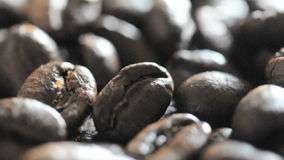 Roasted coffee beans stock video