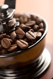 Roasted Coffee Beans In Coffee Grinder Royalty Free Stock Photography