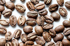 Roasted coffee beans isolated in white background Royalty Free Stock Image