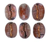 Roasted coffee beans isolated in white background. Roasted coffee beans isolated in a white background Stock Photos