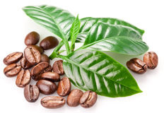 Roasted coffee beans and leaves. Royalty Free Stock Image