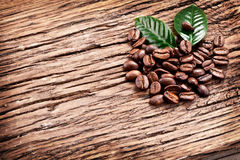 Roasted coffee beans and leaves. Stock Images