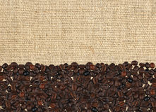 Roasted coffee beans on the linen fabric Stock Images