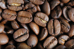 Roasted coffee beans macro Royalty Free Stock Photo