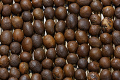 Roasted coffee beans. Macro shot with extended depth of field. Beans lay upside down. Light is rather hard Royalty Free Stock Images