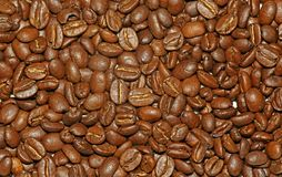 Organic roasted Arabica Coffee Beans background. Roasted Coffee Beans many close up background Stock Photography