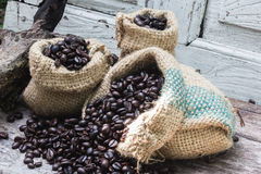 For roasted coffee beans Royalty Free Stock Image