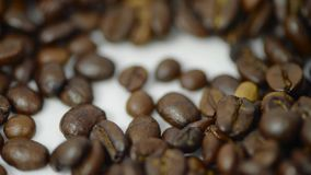 Roasted Coffee beans picking up clip stock video
