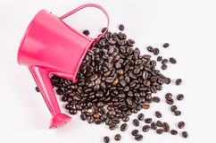 Roasted coffee beans in pink water can Royalty Free Stock Image