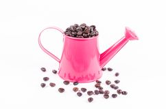 Roasted coffee beans in pink water pot Stock Photo