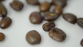 Roasted Coffee beans poured clip stock video footage